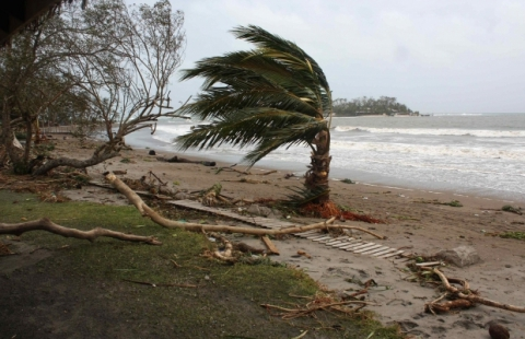 Президент Вануату обурагане «Пэм»: Тихоокеанская страна разрушена
